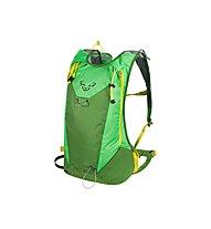 Dynafit RC 20, Green/Citro
