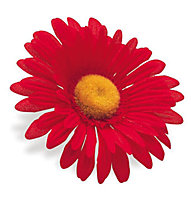 Electra Handlebar Sunflower, Red